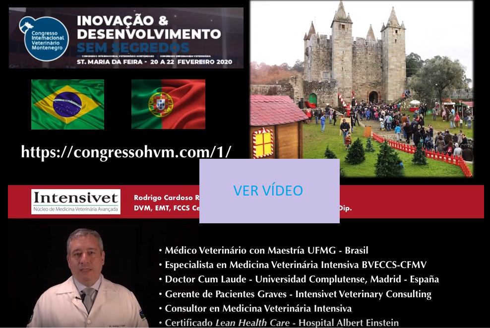 Presentación Congreso